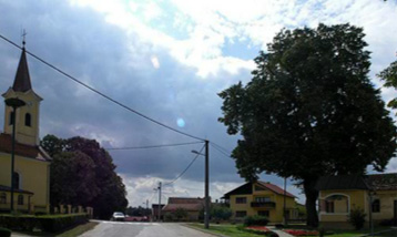 Općina Podravske Sesvete