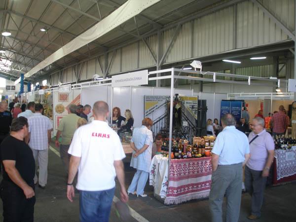 gudovec2012 3